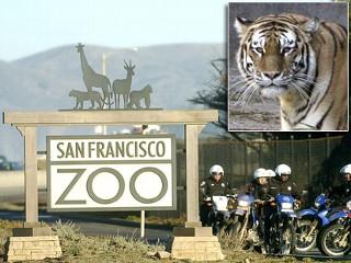 San Francisco Zoo Faces Vicious Legal Battle