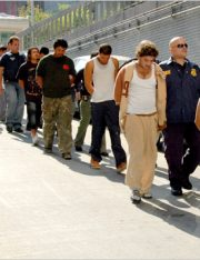 LegalMatch Data Confirms 2008 Federal Estimates for Unauthorized Immigrants