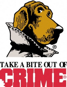 Misdemeanor Crime