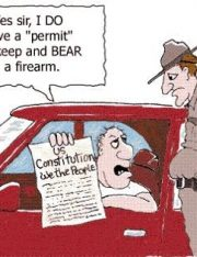 New Gun Control Rulings and Constitutional Implications