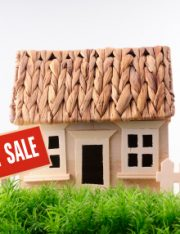 Top 5 Tips Real Estate Agents Should Know to Avoid Foreclosure and Short Sale Lawsuits