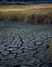Impact of California's Drought on Water Rights