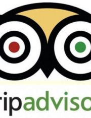 TripAdvisor Under Fire for Blocking Reviews of Rape and Injuries