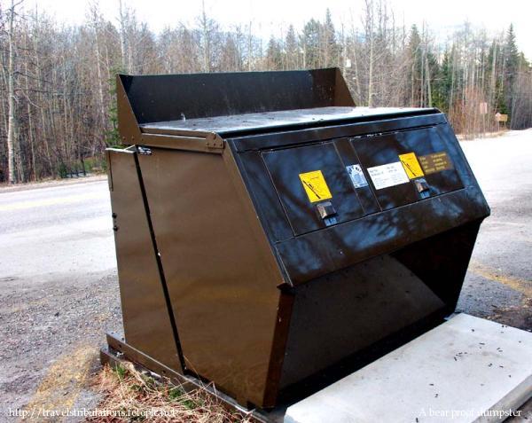 Bear Proof Dumpster